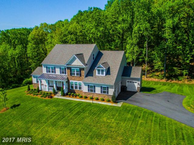 15941 Frost Leaf Lane, Leesburg, VA 20176 (#LO9892867) :: Pearson Smith Realty