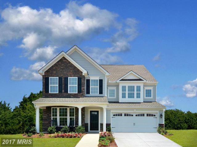 01 Racing Sun Drive, Aldie, VA 20105 (#LO9899070) :: Pearson Smith Realty