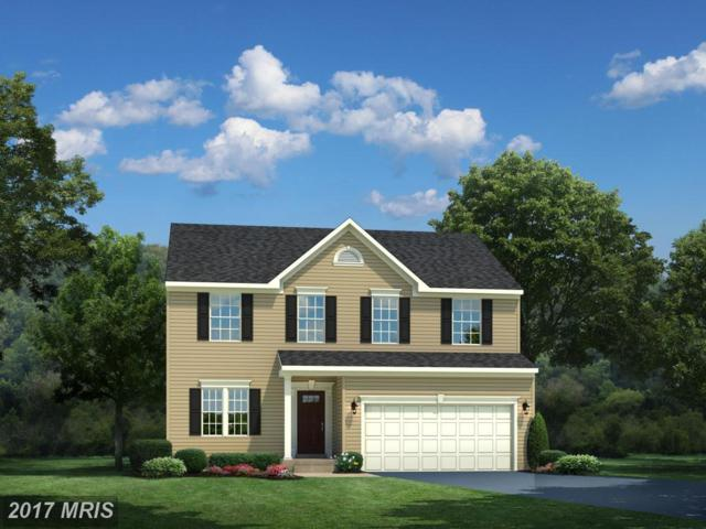 03 Racing Sun Drive, Aldie, VA 20105 (#LO9900082) :: Pearson Smith Realty