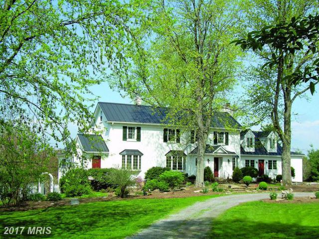 22461 Sam Fred Road, Middleburg, VA 20117 (#LO9905426) :: LoCoMusings