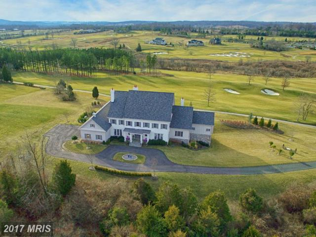22443 Creighton Farms Drive, Leesburg, VA 20175 (#LO9913452) :: Pearson Smith Realty