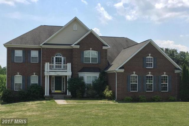 14267 Bookcliff Court, Purcellville, VA 20132 (#LO9926422) :: LoCoMusings