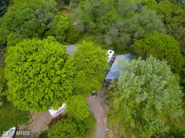 11698 Armistead Filler Lane, Lovettsville, VA 20180 (#LO9933040) :: Pearson Smith Realty