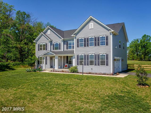 13175 Waterford View Court, Lovettsville, VA 20180 (#LO9934444) :: Pearson Smith Realty
