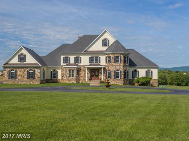 37861 Baker Mill Road, Purcellville, VA 20132 (#LO9943801) :: Wilson Realty Group