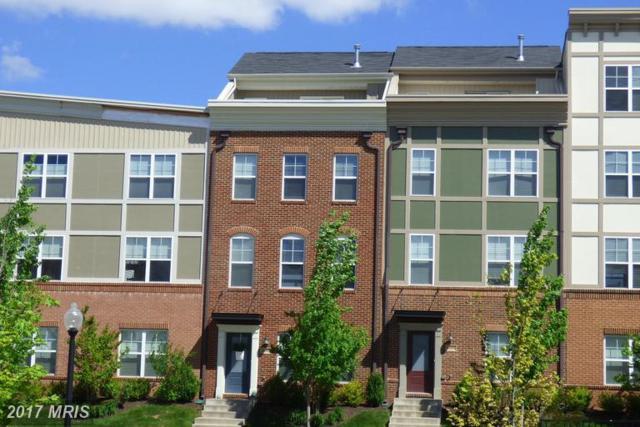 22405 Verde Gate Terrace, Ashburn, VA 20148 (#LO9943814) :: LoCoMusings