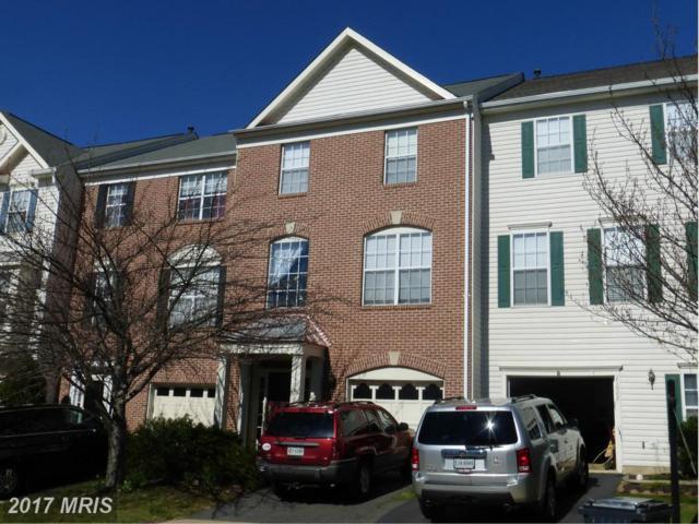 21620 Monmouth Terrace, Ashburn, VA 20147 (#LO9947241) :: LoCoMusings