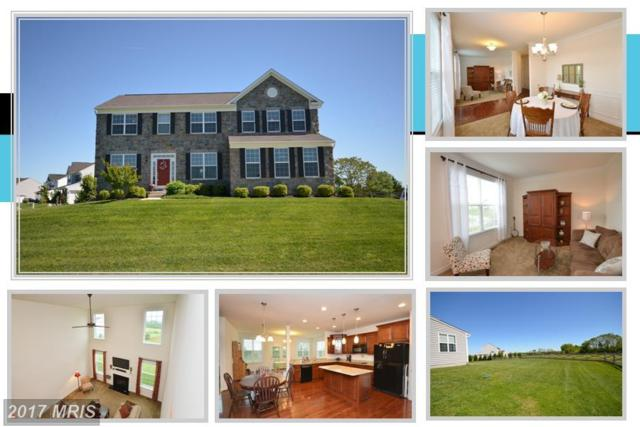 36755 Pond Side Lane, Purcellville, VA 20132 (#LO9950690) :: LoCoMusings