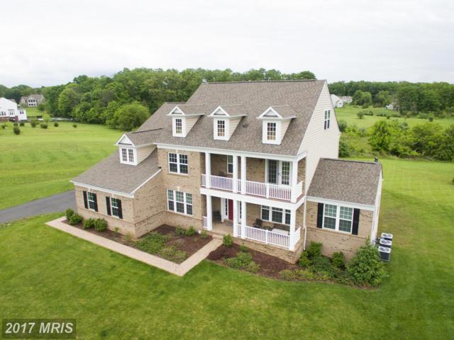 40554 Greyhouse Place, Leesburg, VA 20175 (#LO9951576) :: Pearson Smith Realty