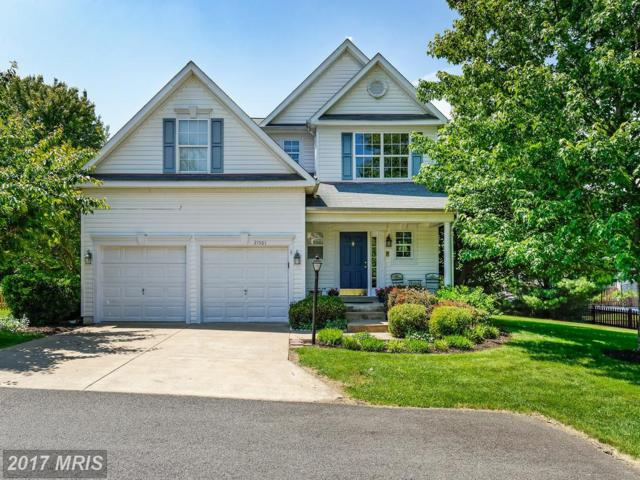 21501 Thornhill Place, Broadlands, VA 20148 (#LO9954630) :: The Greg Wells Team