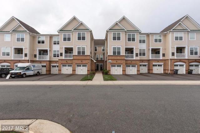 43371 Locust Dale Terrace #108, Ashburn, VA 20147 (#LO9957861) :: LoCoMusings