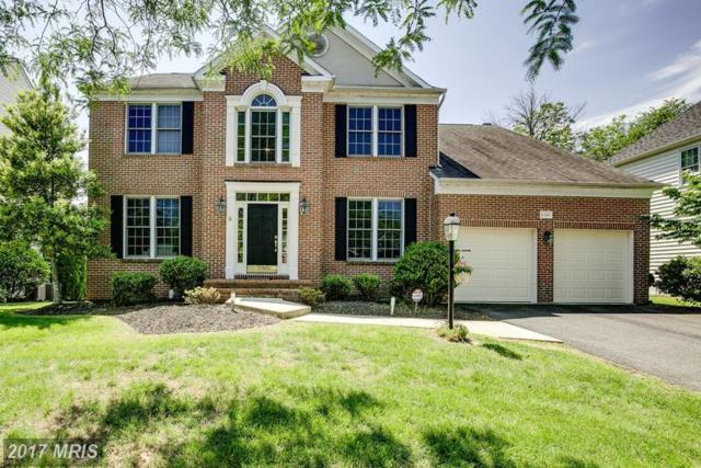 43349 Royal Burkedale Street, Chantilly, VA 20152 (#LO9960590) :: Colgan Real Estate