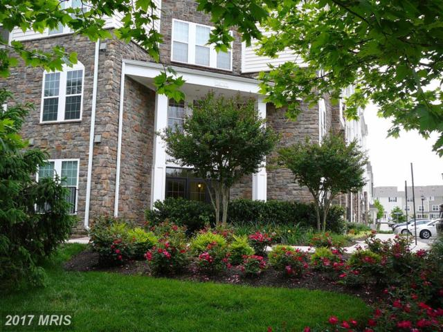 24701 Byrne Meadow Square #108, Aldie, VA 20105 (#LO9972260) :: LoCoMusings