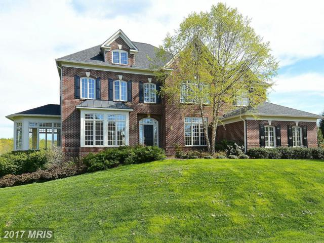 17086 Winning Colors Place, Leesburg, VA 20176 (#LO9973889) :: Pearson Smith Realty