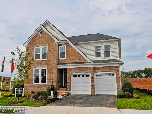 42816 Beardgrass Place, Aldie, VA 20105 (#LO9977948) :: LoCoMusings