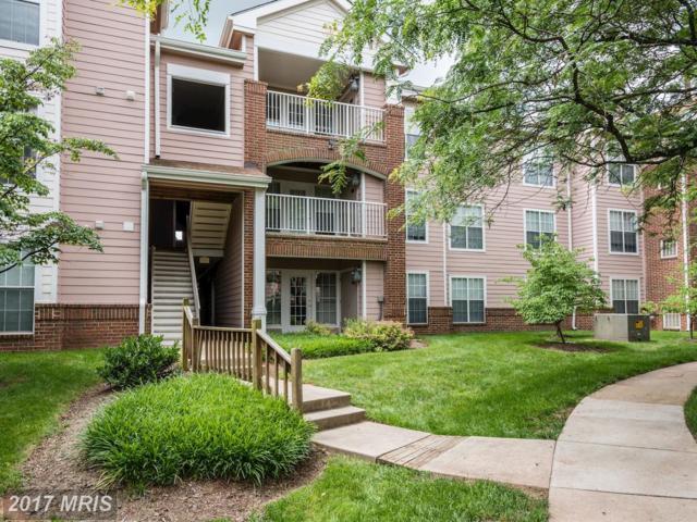 20985 Timber Ridge Terrace #303, Ashburn, VA 20147 (#LO9978377) :: Pearson Smith Realty