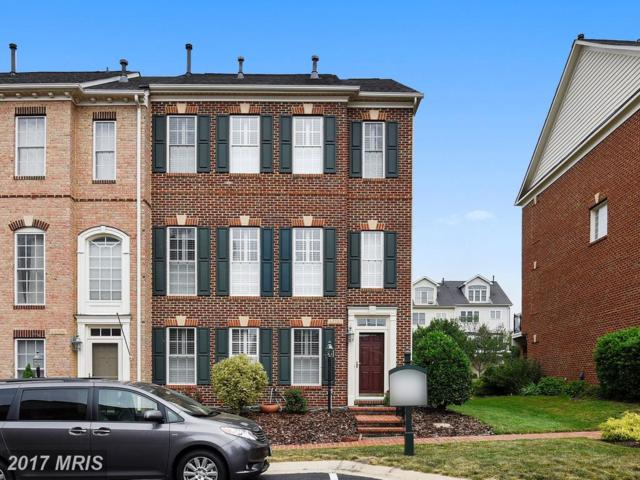 43798 Ballybunion Terrace, Leesburg, VA 20176 (#LO9981962) :: Pearson Smith Realty