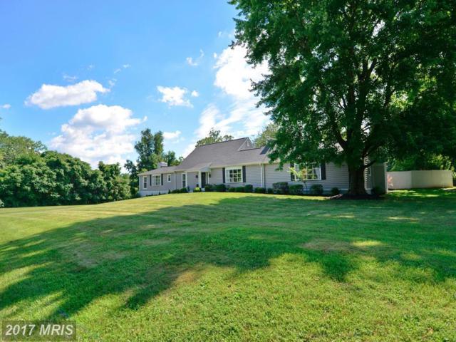 23302 Dover Road, Middleburg, VA 20117 (#LO9982912) :: LoCoMusings