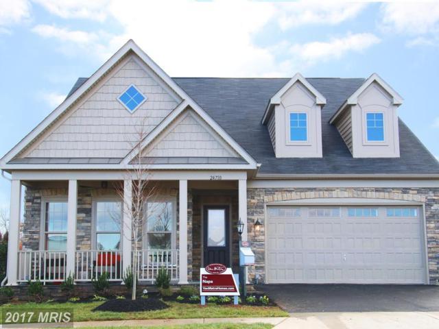 24751 Arapahoe Basin Place, Aldie, VA 20105 (#LO9984117) :: Robyn Burdett Real Estate Group