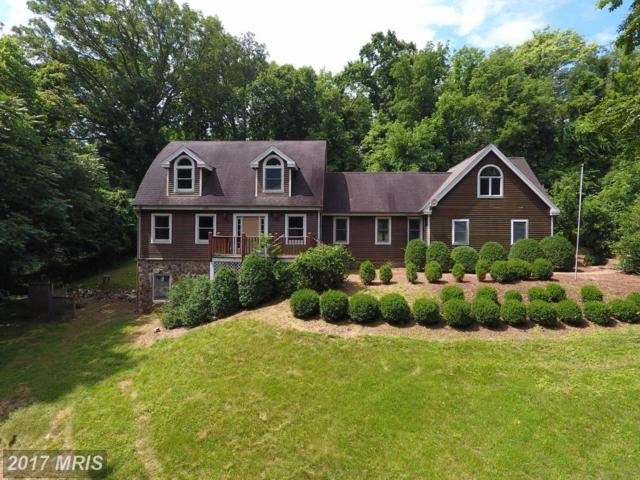 40221 Featherbed Lane, Lovettsville, VA 20180 (#LO9984256) :: LoCoMusings
