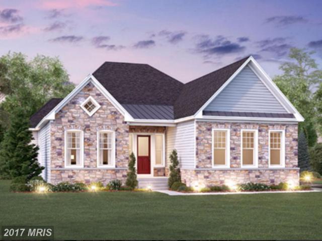 29871 Arapahoe Basin Place, Aldie, VA 20105 (#LO9984799) :: Robyn Burdett Real Estate Group