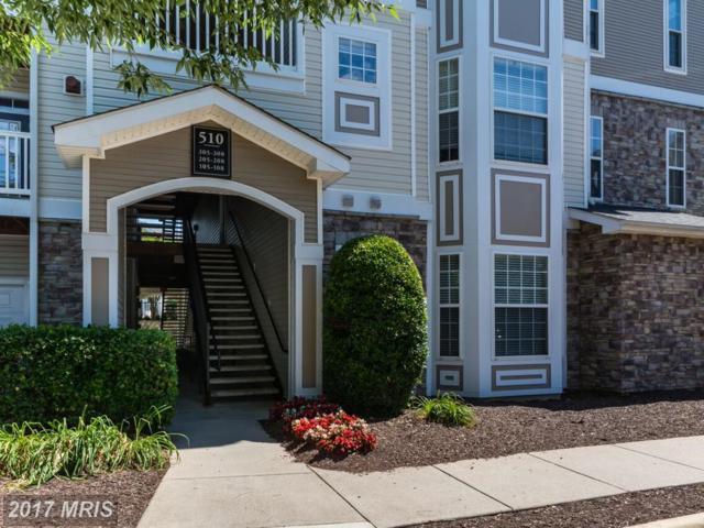 510 Sunset View Terrace SE #308, Leesburg, VA 20175 (#LO9986060) :: LoCoMusings