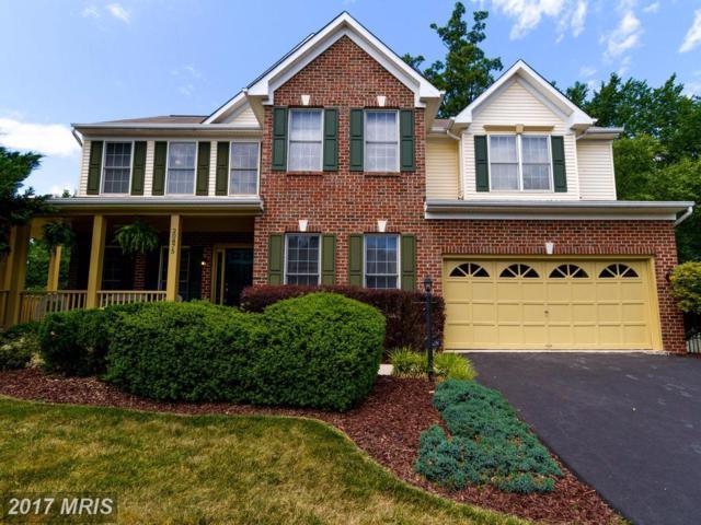 20875 Yellowbloom Court, Ashburn, VA 20147 (#LO9993394) :: Wicker Homes Group