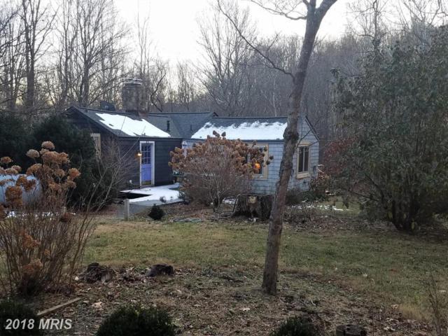 226 Chad Berry Lane, Syria, VA 22743 (#MA10118721) :: Pearson Smith Realty