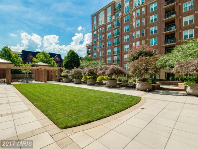 12500 Park Potomac Avenue 208S, Potomac, MD 20854 (#MC10008673) :: Pearson Smith Realty