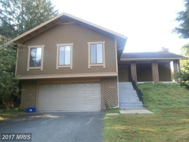 10709 Wayridge Drive, Montgomery Village, MD 20886 (#MC10016151) :: LoCoMusings