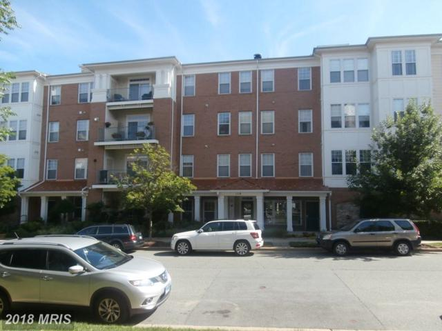 110 Chevy Chase Street #103, Gaithersburg, MD 20878 (#MC10019326) :: Pearson Smith Realty