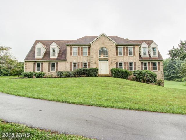 8620 Stableview Court, Gaithersburg, MD 20882 (#MC10034169) :: Pearson Smith Realty
