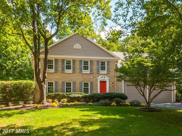 12409 Goldfinch Court, Potomac, MD 20854 (#MC10041321) :: Pearson Smith Realty