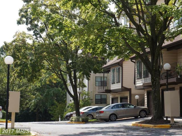 1639 Carriage House Terrace H, Silver Spring, MD 20904 (#MC10041546) :: Pearson Smith Realty