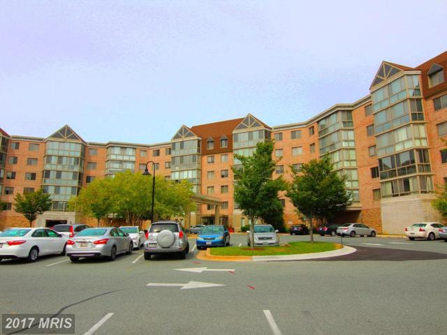 2901 Leisure World Boulevard #505, Silver Spring, MD 20906 (#MC10049206) :: Pearson Smith Realty