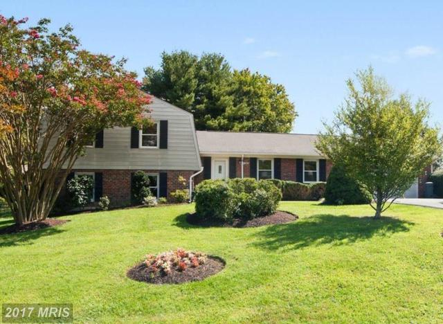 17629 Prince Edward Drive, Olney, MD 20832 (#MC10051665) :: Pearson Smith Realty