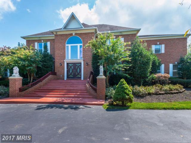 12821 Travilah Road, Potomac, MD 20854 (#MC10056515) :: LoCoMusings