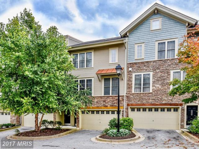 13314 Sheffield Manor Drive #14, Silver Spring, MD 20904 (#MC10061931) :: Pearson Smith Realty