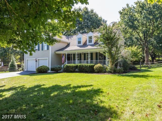 12608 Blue Mountain Court, North Potomac, MD 20878 (#MC10073610) :: Dart Homes