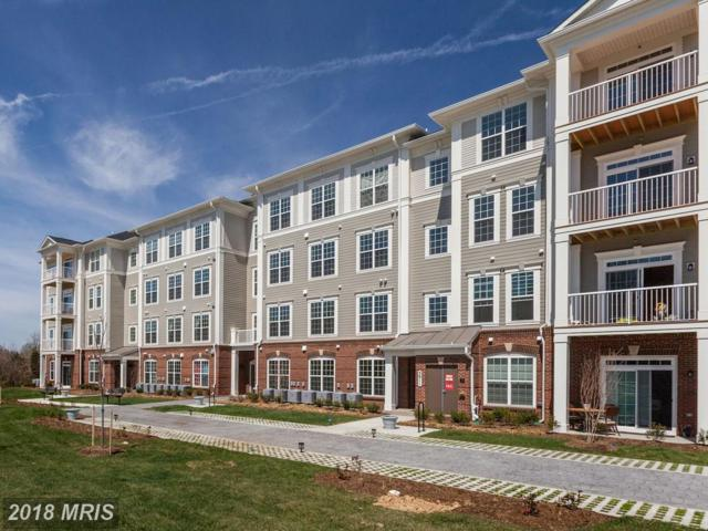 3825 Doc Berlin Drive #45, Silver Spring, MD 20906 (#MC10099720) :: Dart Homes