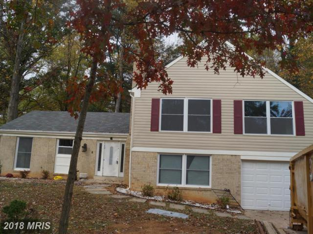 6 Countryside Court, Silver Spring, MD 20905 (#MC10103747) :: LoCoMusings