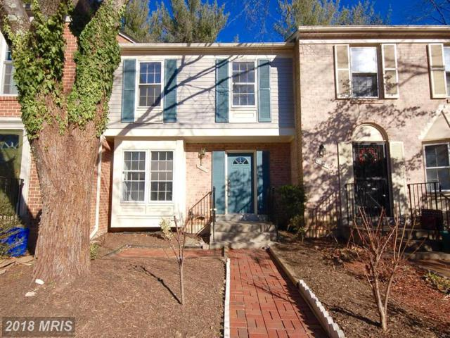 10089 Maple Leaf Drive, Montgomery Village, MD 20886 (#MC10119978) :: Pearson Smith Realty