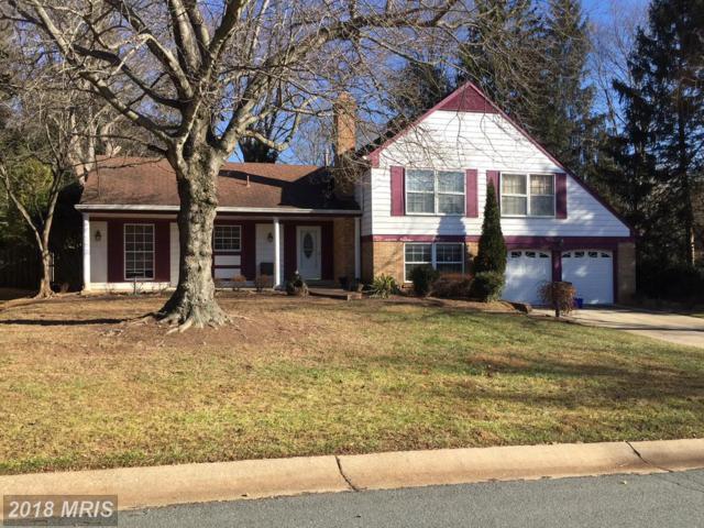 9223 Orchard Brook Drive, Potomac, MD 20854 (#MC10124184) :: Bob Lucido Team of Keller Williams Integrity