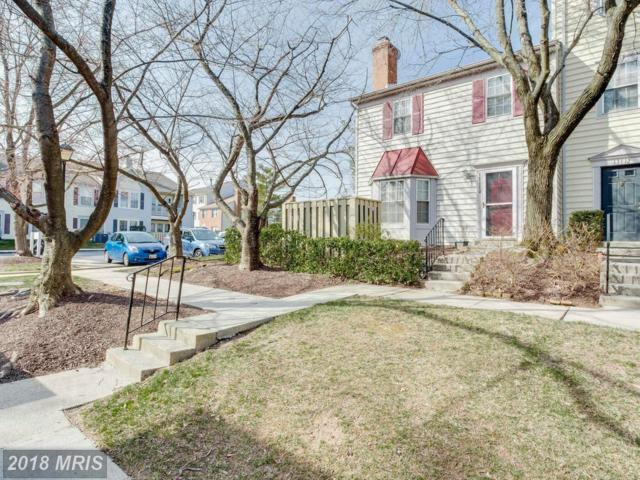 13110 Conductor Way #200, Silver Spring, MD 20904 (#MC10163887) :: Bob Lucido Team of Keller Williams Integrity