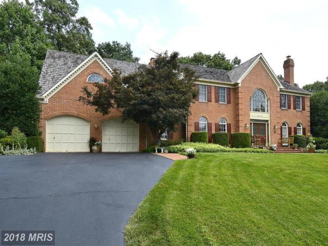 18113 Hayloft Drive, Rockville, MD 20855 (#MC10201498) :: Keller Williams Pat Hiban Real Estate Group