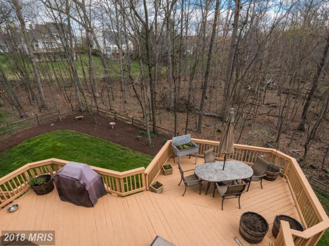 14500 Pebblewood Drive, North Potomac, MD 20878 (#MC10215189) :: Dart Homes