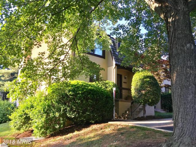 10648 Muirfield Drive, Potomac, MD 20854 (#MC10235336) :: Dart Homes