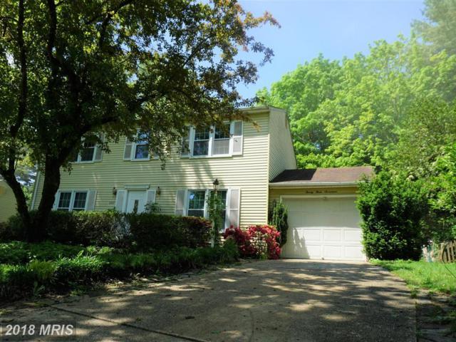 2317 Glenmore Terrace, Rockville, MD 20850 (#MC10246342) :: The Sebeck Team of RE/MAX Preferred