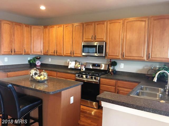 13222 Catawba Manor Way, Clarksburg, MD 20871 (#MC10279719) :: The Bob & Ronna Group