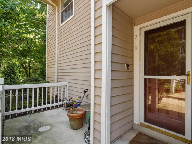 5800 Inman Park Circle #1313, Rockville, MD 20852 (#MC10288265) :: Bob Lucido Team of Keller Williams Integrity